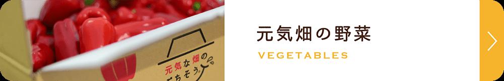 元気畑の野菜